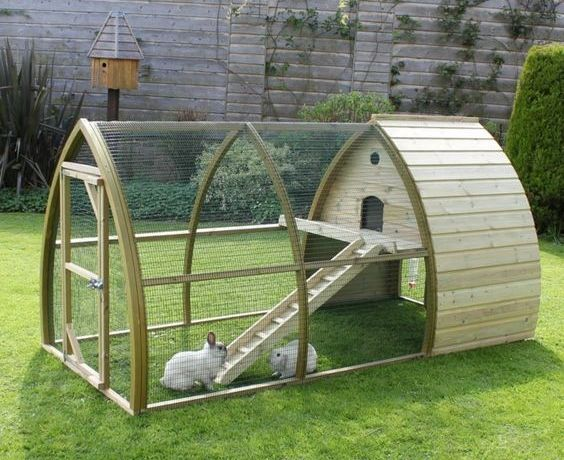 What to Put in Bottom of Rabbit Cage?