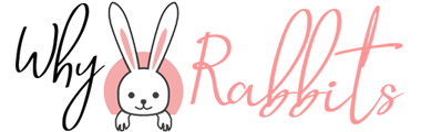 Best Website For Your Rabbits' Grooming