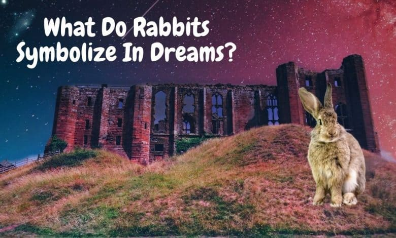 What do rabbits symbolize in dreams